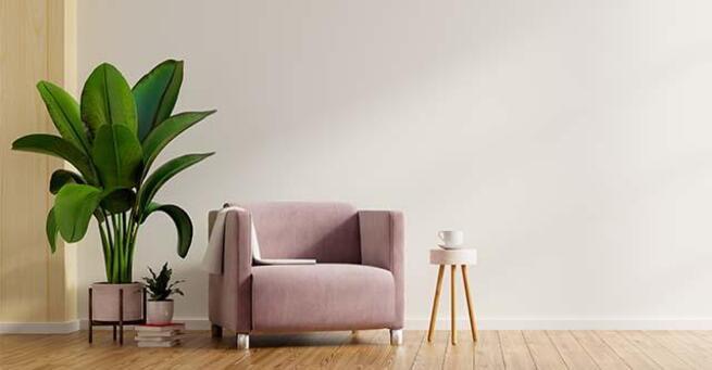 Sala com sofá, planta e mesa de canto.